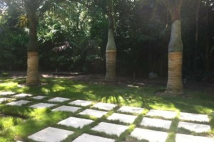 Photo #11: Landscape DESIGN & Installation
