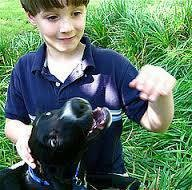 Photo #10: In Home Dog Training