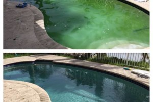 Photo #16: Clean Pools - Swimming Pool Service & Repairs