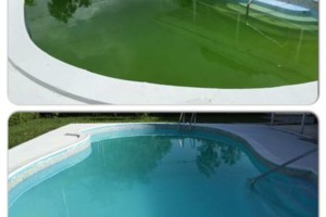 Photo #15: Clean Pools - Swimming Pool Service & Repairs
