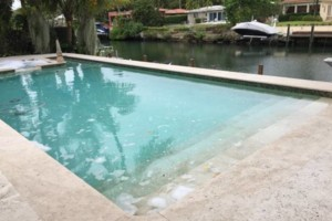 Photo #14: Clean Pools - Swimming Pool Service & Repairs