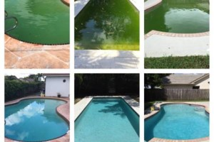 Photo #9: Clean Pools - Swimming Pool Service & Repairs