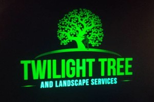 Photo #1: Insured All American Landscapers - Twilight tree and landscape