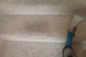 Photo #7: Sean' Carpet Cleaning Specials - $19/Room or $59/House (4 Room Special)