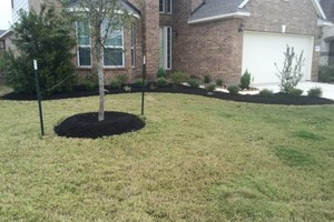 Photo #9: Tapia's Landscaping & Lawn Care Services