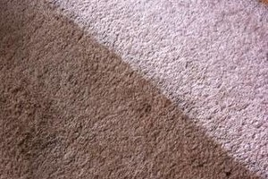 Photo #3: Carpet Cleaning and Janitorial Services