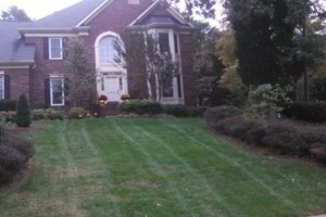 Photo #6: The Lawn Chaser (Quality Lawn and Leaf Clean Up Services)
