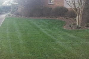 Photo #4: The Lawn Chaser (Quality Lawn and Leaf Clean Up Services)