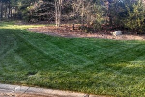 Photo #3: The Lawn Chaser (Quality Lawn and Leaf Clean Up Services)