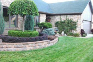 Photo #6: PATIOS, GRADING,TREE SERVICE and more!