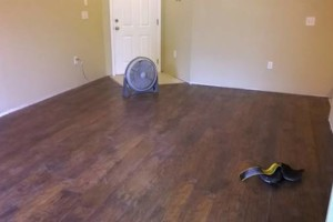 Photo #6: Floor Installation of All Types at Low Cost