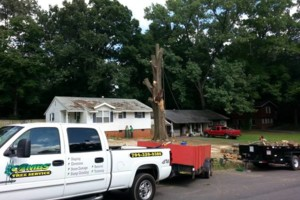 Photo #5: Combs' tree service. FREE ESTIMATES