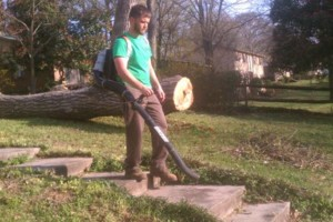Photo #3: Combs' tree service. FREE ESTIMATES