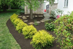 Photo #4: Intrinity landscaping - Landscape rennovation