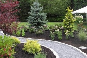 Photo #5: Intrinity landscaping - Landscape rennovation