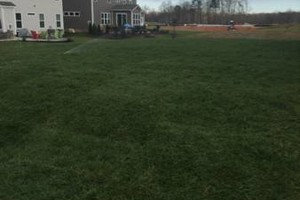 Photo #5: LANDSCAPING, SOD, TREE REMOVAL, MOWING, PRESSURE WASHING...