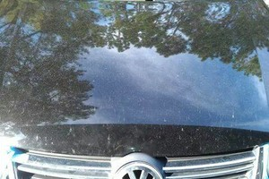 Photo #15: MOBILE DETAILING, PAINT, stain removal, leather cleaning...