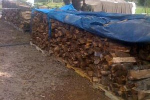 Photo #1: Fire wood sale - seasoned good and dry for fast burning - $80.00 for a f150 load!