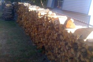 Photo #2: Fire wood sale - seasoned good and dry for fast burning - $80.00 for a f150 load!