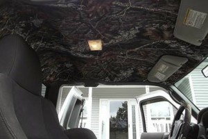 Photo #2: Is your car's headliner sagging?