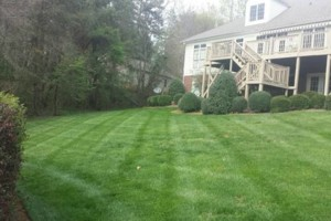 Photo #1: 25% off Commercial or Residential Yearly Lawn Maintenance Agreements