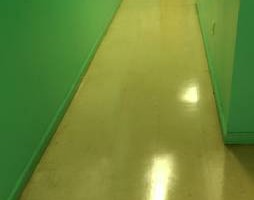 Photo #8: Freshbuzz General Floor Maintenance Services