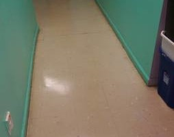 Photo #6: Freshbuzz General Floor Maintenance Services