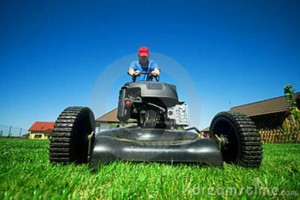 Photo #3: Lawn Care, Pruning, Hauling, Landscaping, Etc........
