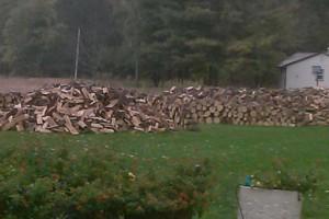 Photo #1: Firewood / fire wood 3 cords 350