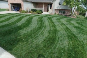 Photo #2: EH Group, LLC. LAWN CARE 2016 - Estate Mowing, Landscaping, Mulching, Hauling...