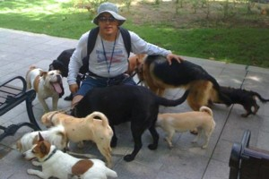 Photo #9: Dog walking. Pet Sitting. Pet Waste Removal. Grooming...