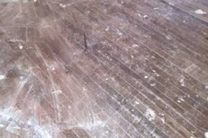 Photo #6: HARDWOOD FLOORS - 60 Cents/ Sqft for BUFF & COAT