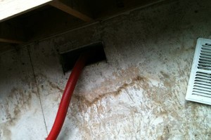 Photo #3: BRIGHT CARPET. QUALITY CARPET & UPHOLSTERY CLEANING / AIR DUCT CLEANING