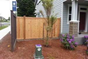 Photo #10: ABOVE & BEYOND FENCING LLC