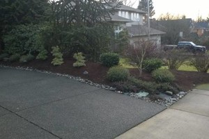 Photo #6: Landscaping Service (trimming, pruning,  weed control,  fertilizing)