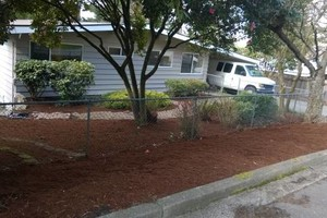 Photo #4: Landscaping Service (trimming, pruning,  weed control,  fertilizing)