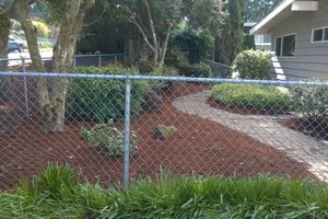 Photo #3: Landscaping Service (trimming, pruning,  weed control,  fertilizing)