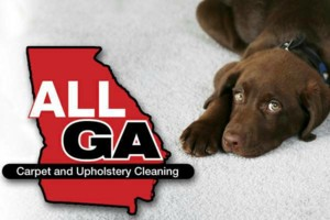 Photo #4: CARPET CLEANING! $69 for 5 rooms!