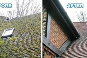 Photo #2: B & R COMPANY. WINDOW, ROOF, GUTTER CLEANING