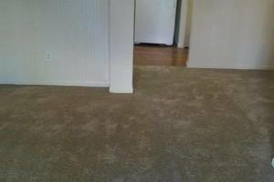 Photo #1: Professional Carpet Installer