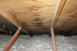 Photo #20: ROOFING / LEAKS / RE - ROOFS / MAINTENANCE