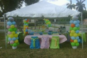 Photo #12: AceEventsUsa. Tent 20 x20 $95.00 All day!