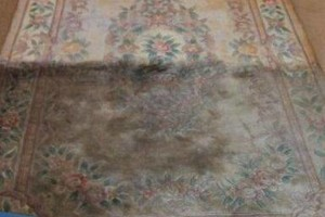 Photo #5: MAKE YOUR CARPETS LOOK NEW AGAIN