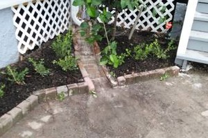 Photo #10: Refresh you garden.. Clean up, lawn care...