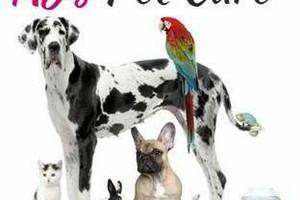 Photo #1: AJ's Pet Care - Training, Pet Sitting, Meds, Overnight Insured &Bonded