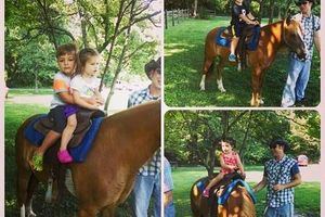 Photo #11: Pony Rides and Farm Petting Zoo ~ We come to you!