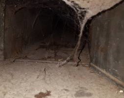 Photo #2: Air duct cleaning and furnace repair