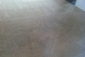 Photo #2: BJ's Steam Cleaning/Professional Carpet Cleaning Service
