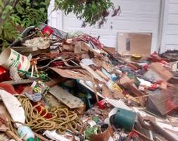 Photo #2: YARD/LOT CLEAN UP/TRASH REMOVAL