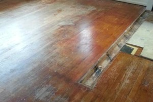 Photo #14: HARDWOOD FLOOR REFINISHING (+ SAND and REPAIR)
